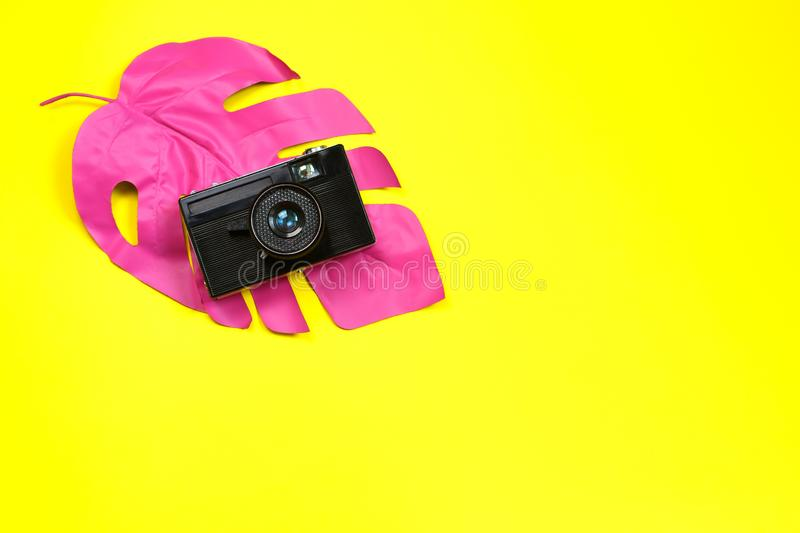 Pink tropical palm leaf of monstera and camera on yellow background. fashion concept. minimalism. Summer concept. Concept art royalty free stock photography