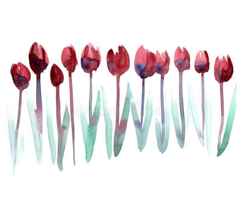 Download Pink Tulip stock illustration. Illustration of blossoms - 23731852