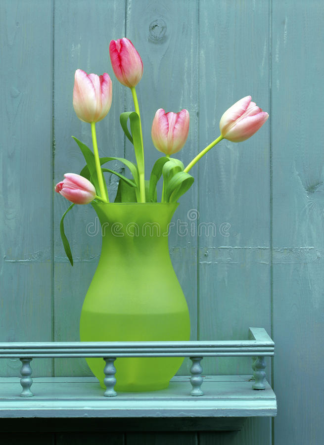 Pink tulips on blue stock photo