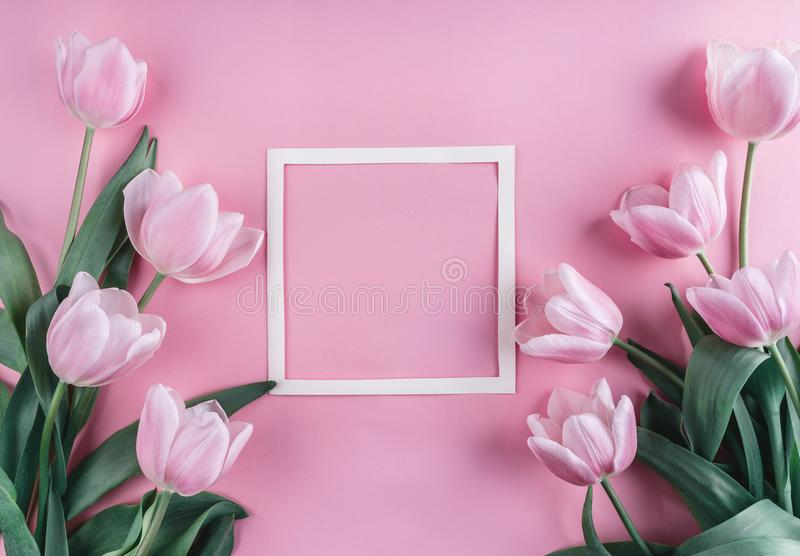 Pink tulips flowers and sheet of paper over light pink background. Saint Valentines Day frame or background. stock photography