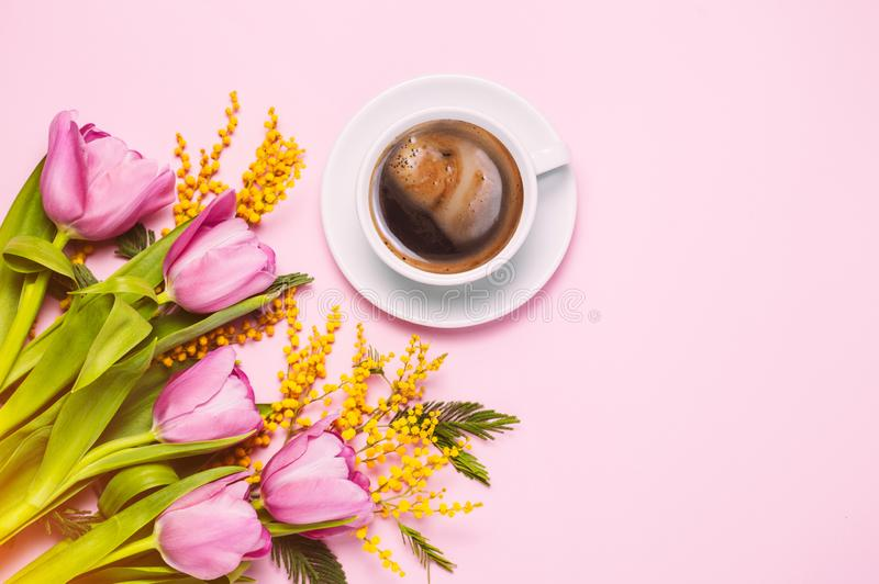 Pink tulips and mimosa flowers with cup of coffee on pink background royalty free stock images
