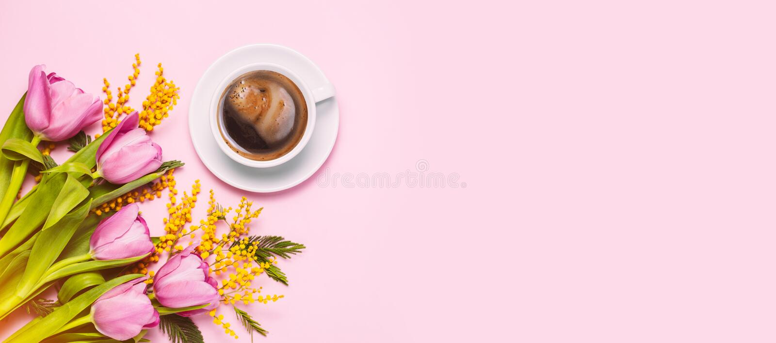 Pink tulips and mimosa flowers with cup of coffee on pink background. Pink tulips and mimosa flowers with cup of coffee on pink trendy background. Spring stock photo