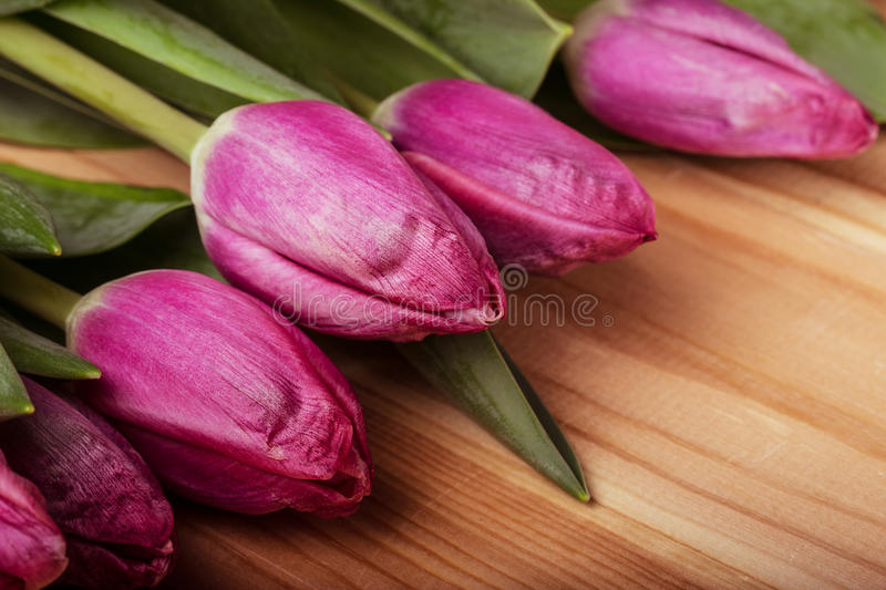 Pink tulips over wooden table. Background stock photos