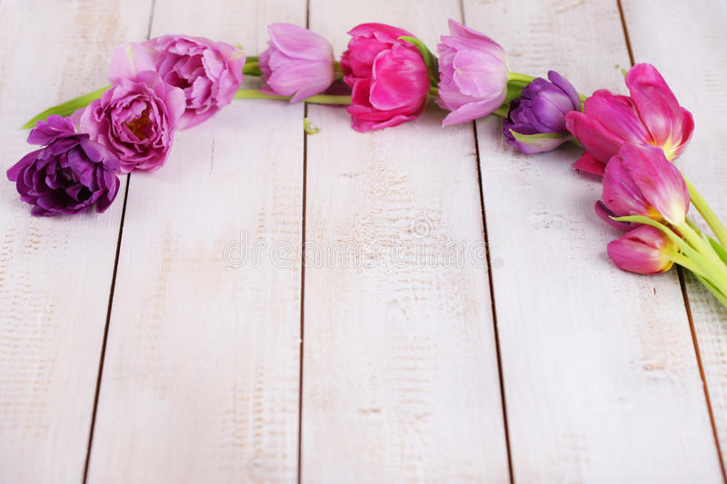 Pink tulips in a row. On wooden board royalty free stock photography