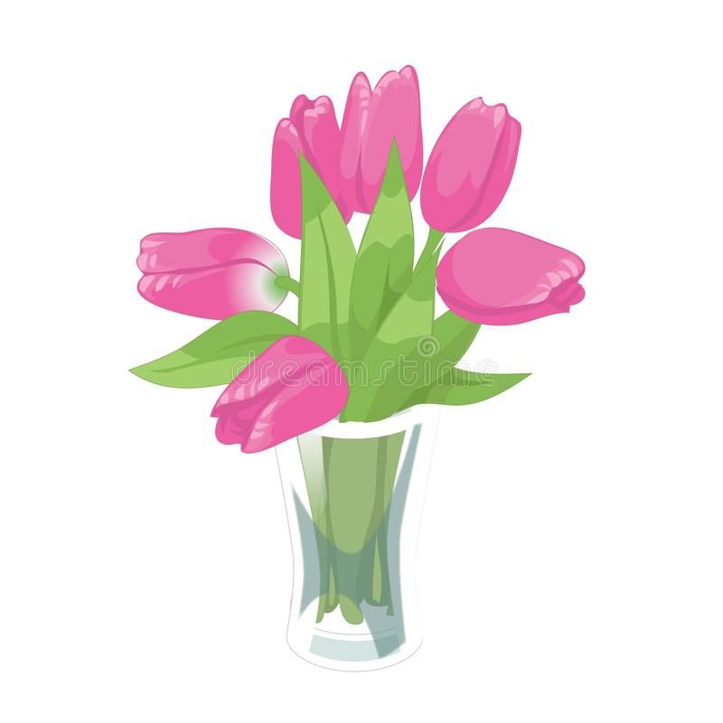 Pink tulips spring bouquet in the glass vase on the white background. Flower vector illustration royalty free illustration