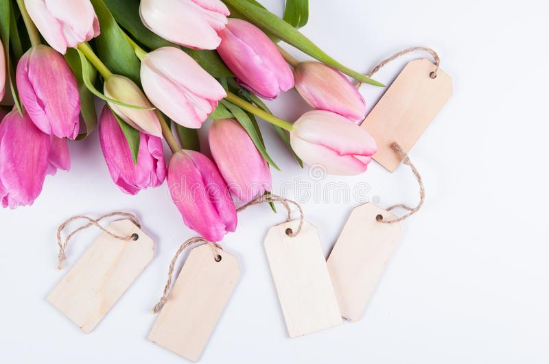 Pink tulips and tags stock photo