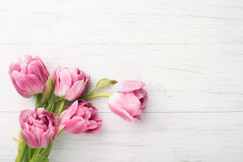 Pink tulips on white wooden background. stock photo