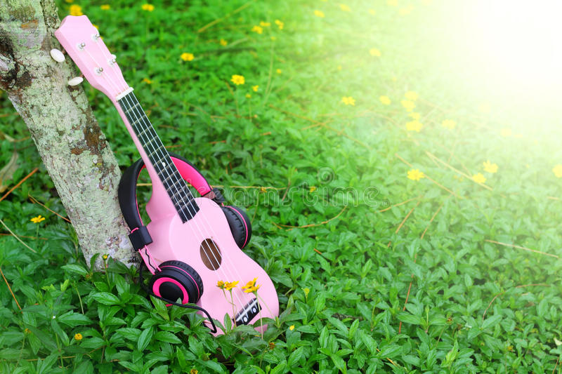 Pink ukulele music on green grass background.  royalty free stock images