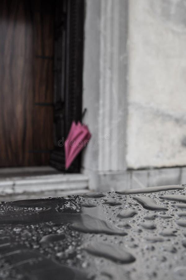 A pink umbrella. Against the grey rain stock photos