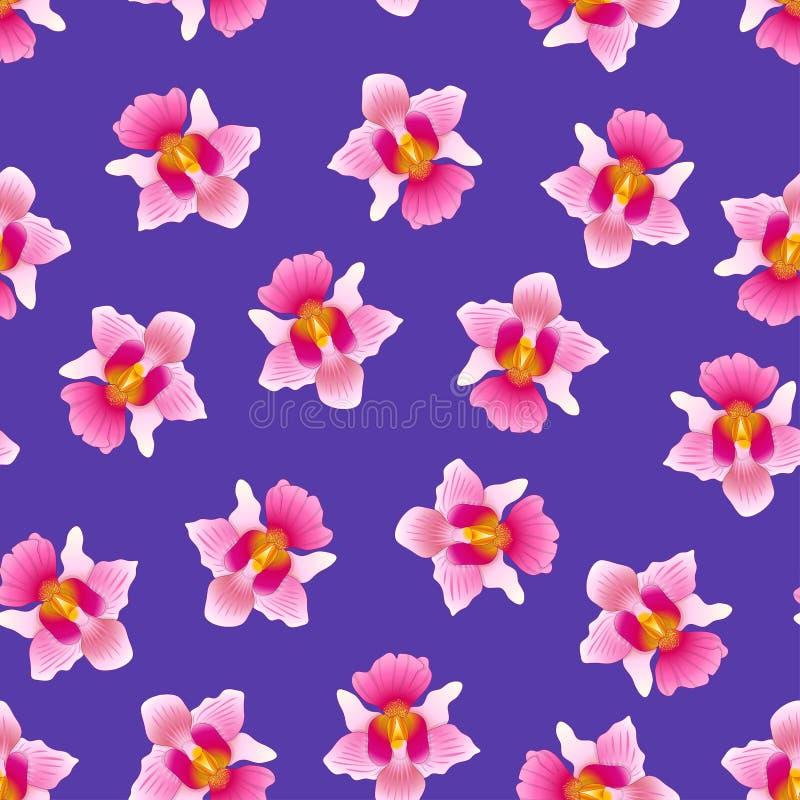 Pink Vanda Miss Joaquim Orchid on Purple Violet Background. Singapore National Flower. Vector Illustration.  stock illustration