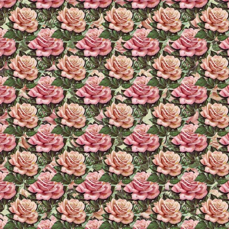 Pink vintage rose flower wallpaper background repeat. Pink vintage rose wallpaper background seamless repeat pattern royalty free stock image