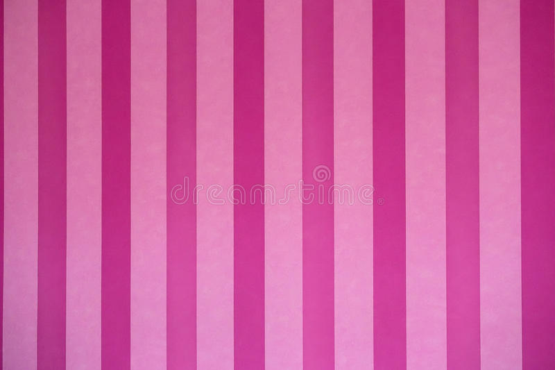 Pink wallpaper. Pink vertical stripe wallpaper in the room stock image