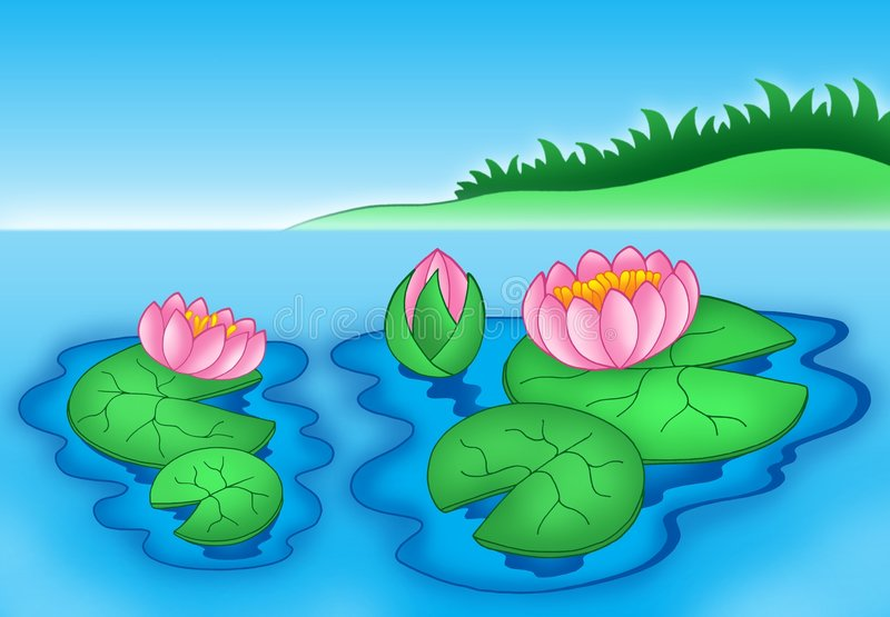 Download Pink water lilies 2 stock illustration. Image of leaves - 6026775