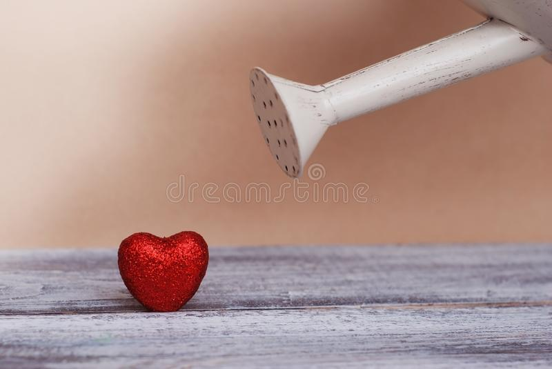 Pink watering can watering red heart crochet filling love together. Love concept. royalty free stock photography