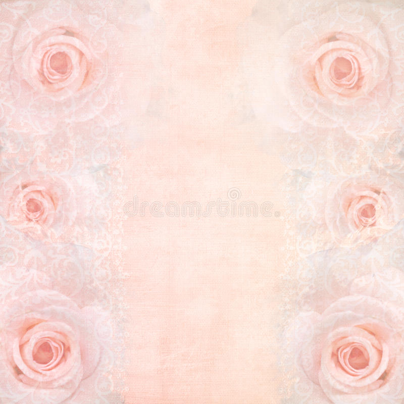 Pink wedding background with roses royalty free stock photos