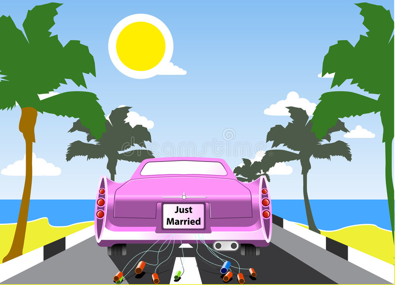 Pink Wedding Limousine Stock Images