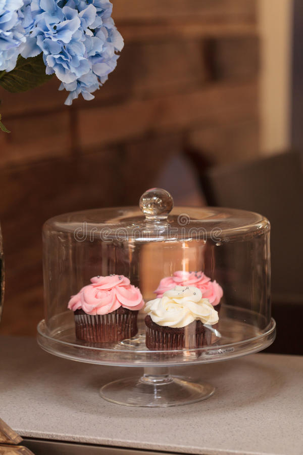 Pink and white cupcakes. Sit on an open windowsill in a glass domed platter with a blue hydrangea in a vase next to it royalty free stock photos