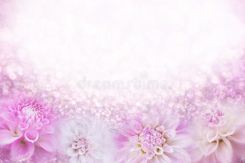 Pink and white dahlia flower frame background in soft vintage tone with glitter light and bokeh, copy space for text stock image