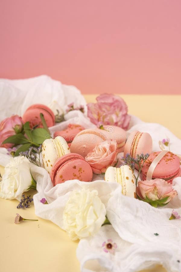 Pinke Christbaumkugeln.Decoratively Pink Rose Stock Images Download 43 Royalty