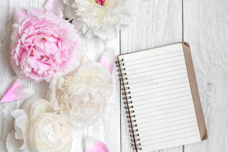 Pink and white peony flowers with blank lined notebook on white wooden table stock photos