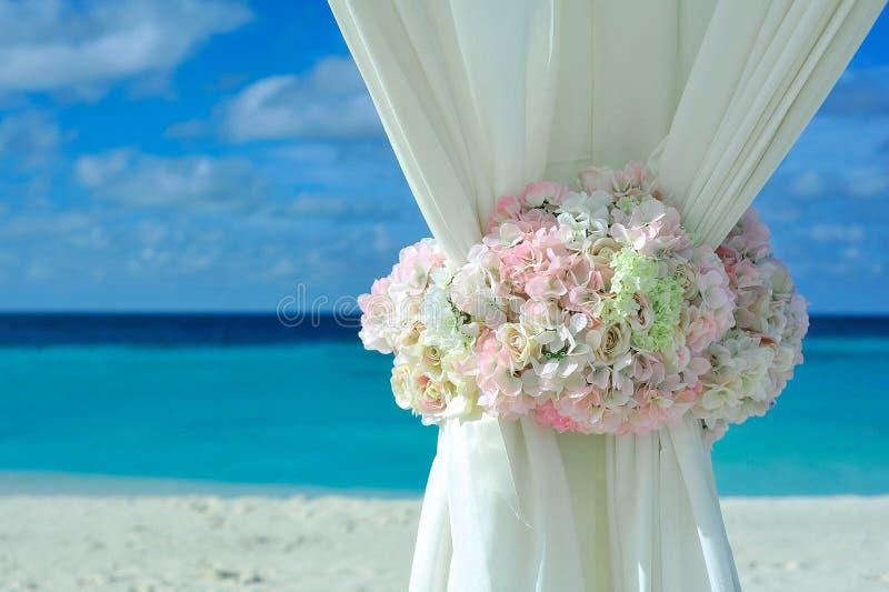 Pink White Petal Flower on White Curtain Near White Sand Beach on Daytime royalty free stock photos