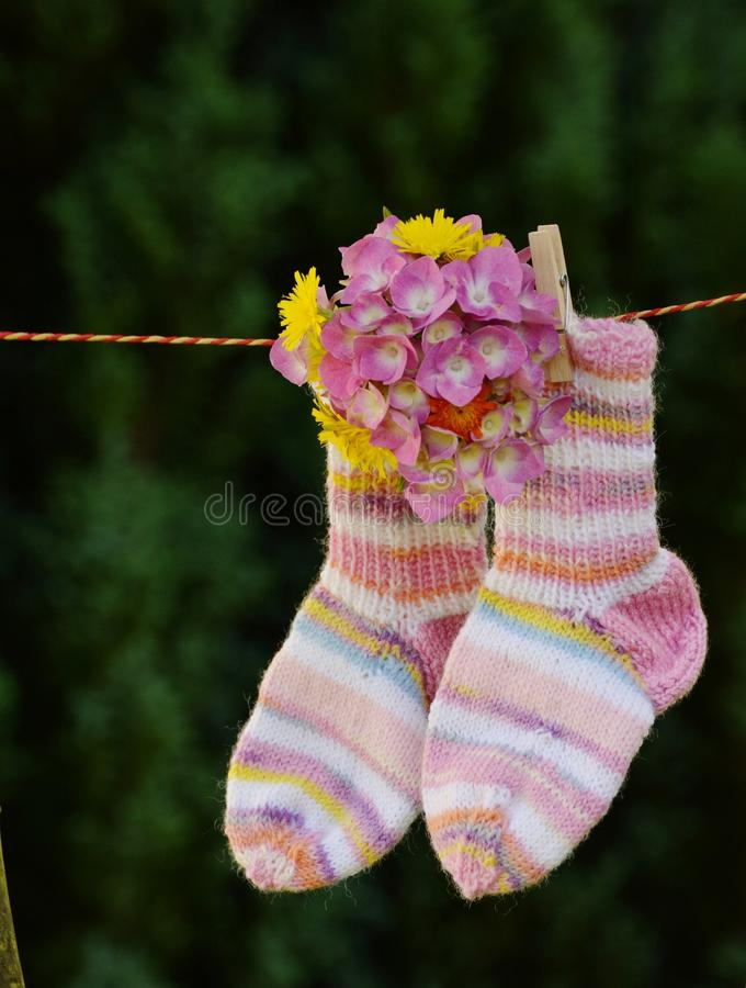 Pink And White Sock With Pink Flower Hanging Free Public Domain Cc0 Image