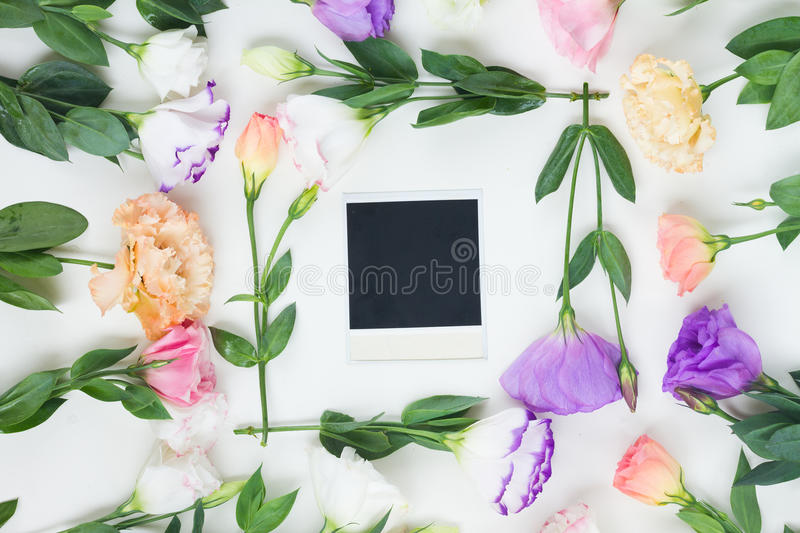 Pink, white and violet flowers. Pink, white and violet eustoma flowers frame with one instant photo stock image