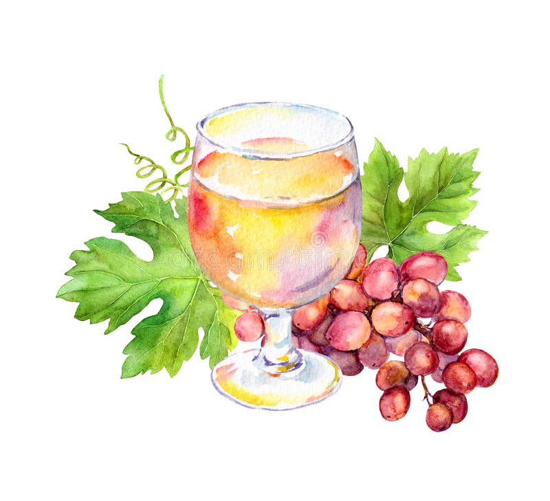 Pink wine glass with vine leaves, grape berries. Watercolor stock illustration
