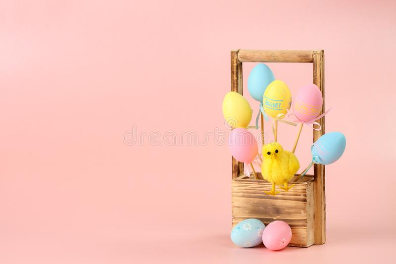 Pink, yellow and blue painted eggs on sticks and a cute chicken in a wooden basket for flowers on a pink background. Easter stock images
