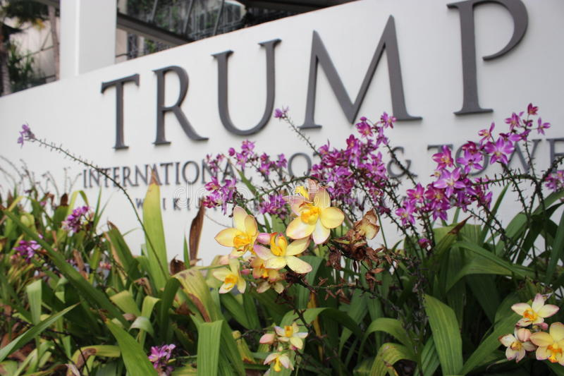 Pink & Yellow Flowers infront of Trump Sign. Pink and Yellow Flower Bed infront of Trump Sign, in Hawaii stock image