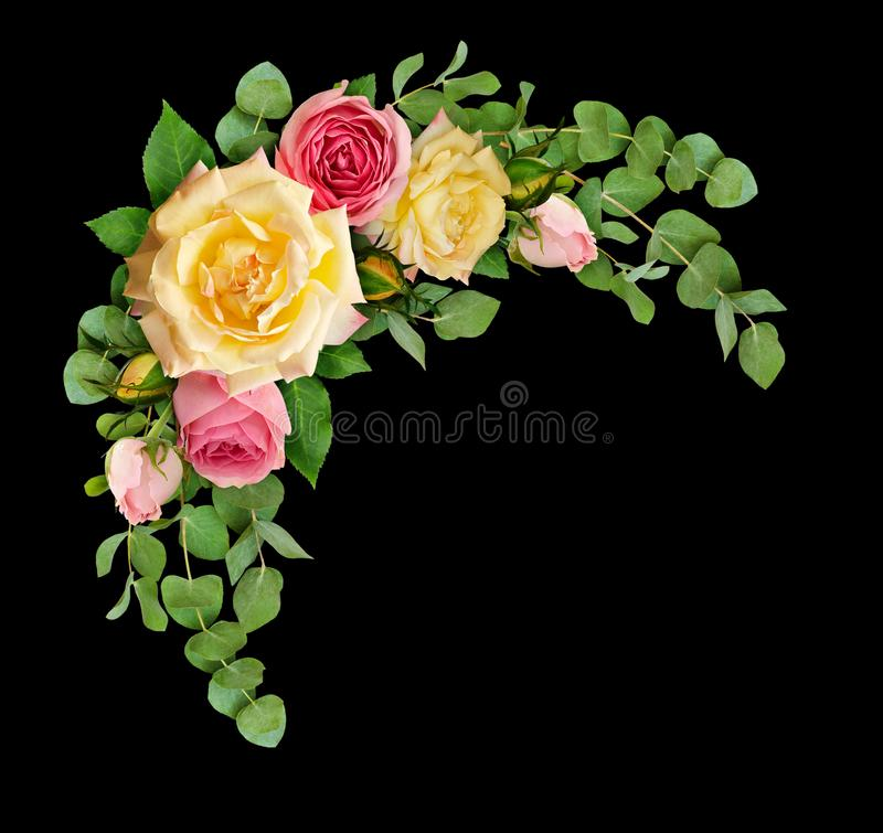 Pink and yellow rose flowers with eucalyptus leaves in a corner stock photos
