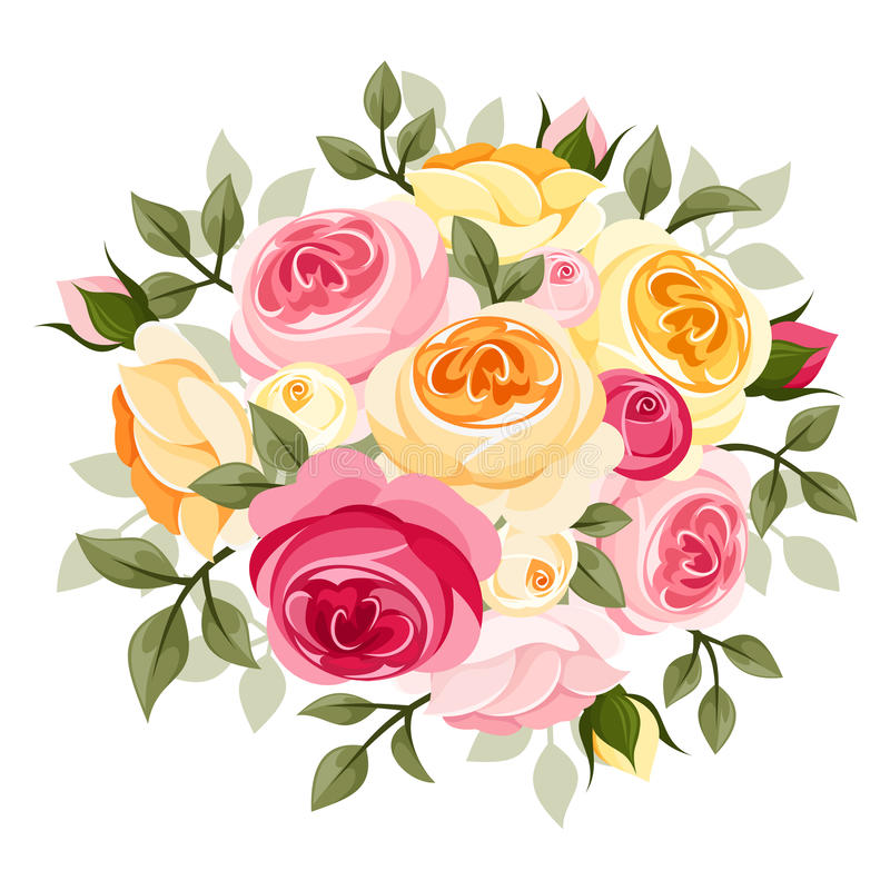 Pink and yellow roses. Illustration of pink and yellow English roses, rose buds and leaves isolated on a white background vector illustration