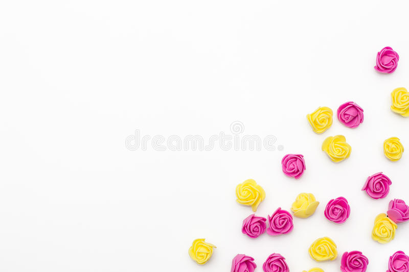 Pink and yellow roses on a white background. stock images