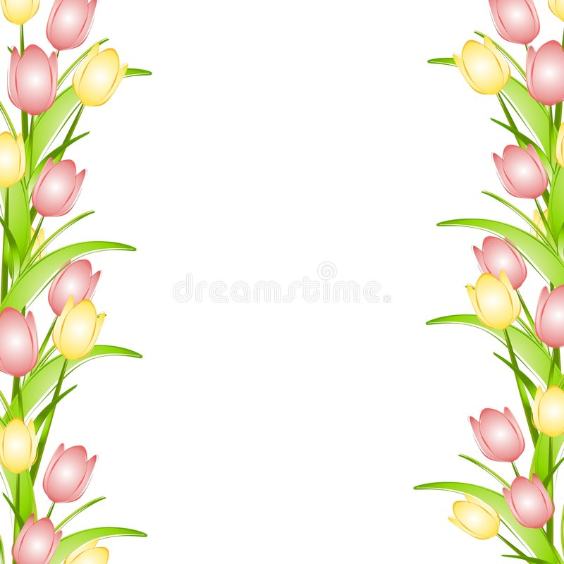 Free Pink Yellow Spring Tulips Flower Border Royalty Free Stock Photography - 4008787