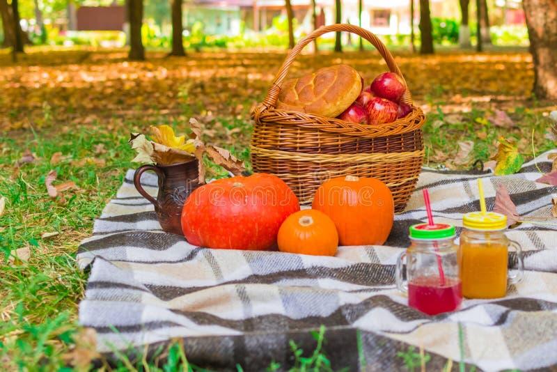 Pinkin w naturze łozinowy kosz na szkockiej kraty szkockiej kracie wokoło żółtego ulistnienia, napojów, bani i jabłek, bochenek c obraz stock
