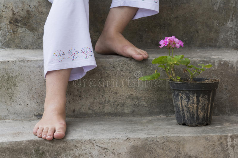 Pinkish Geranium Cranesbill Flower And Feet royalty free stock photo
