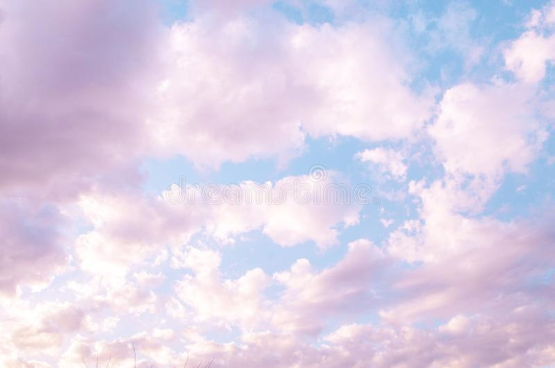 Pinky evening sky, vanilla sky scattered clouds royalty free stock photos