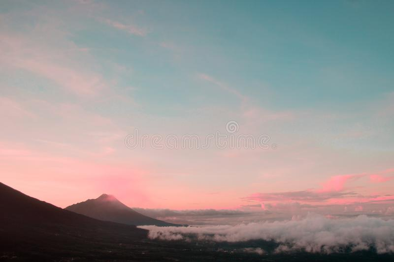 Pinky Morning royalty free stock images