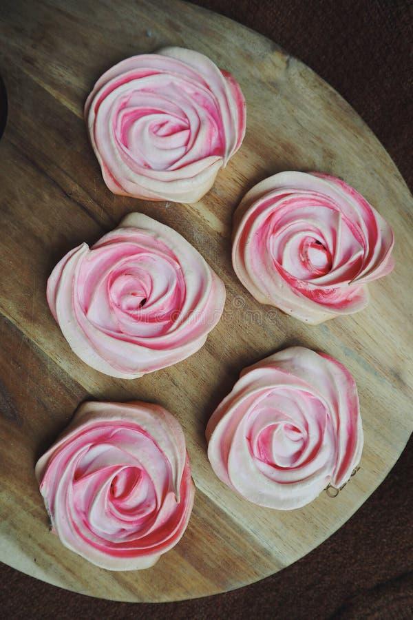 Pinky Roses arkivfoto