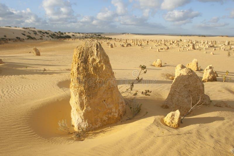 Pinnacle Desert Stock Photos