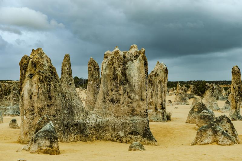 Pinnacles, West Australia royalty free stock photography