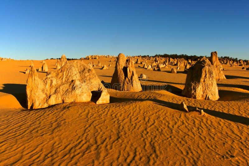 Download The Pinnacles stock photo. Image of natural, limestone - 15563536