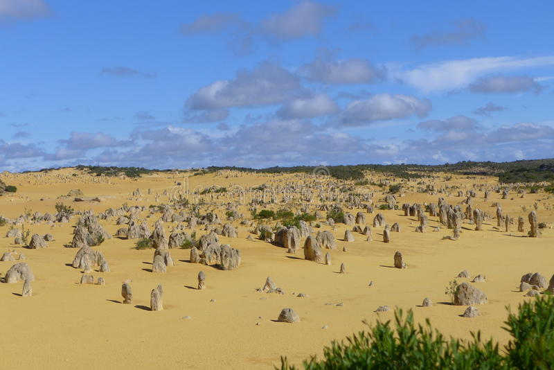 The pinnacles in Cervantes at Western Australia stock images