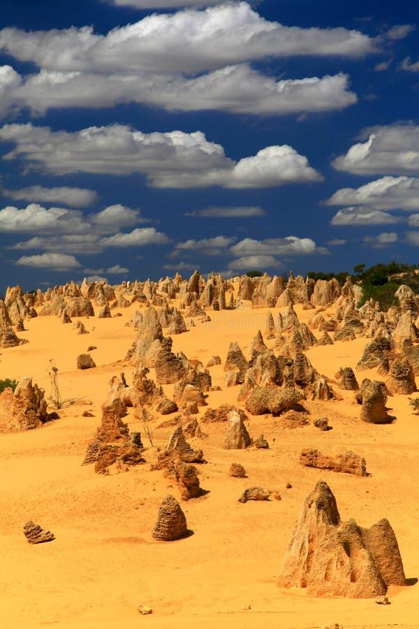 Free Pinnacles Desert Royalty Free Stock Photos - 15107428