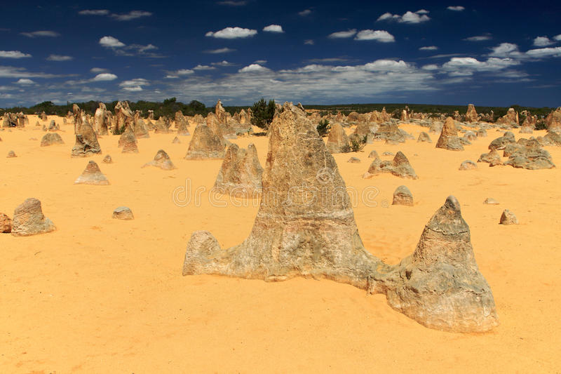 Pinnacles Desert,Western Australia stock images