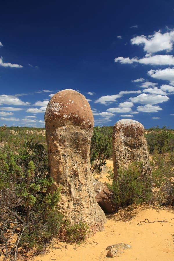 Pinnacles Desert,Western Australia royalty free stock images