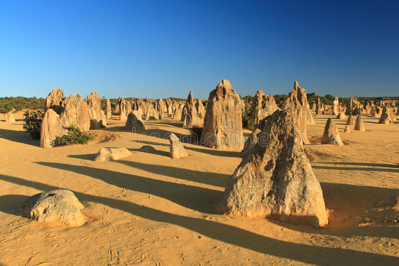 Pinnacles Desert,Western Australia stock photography