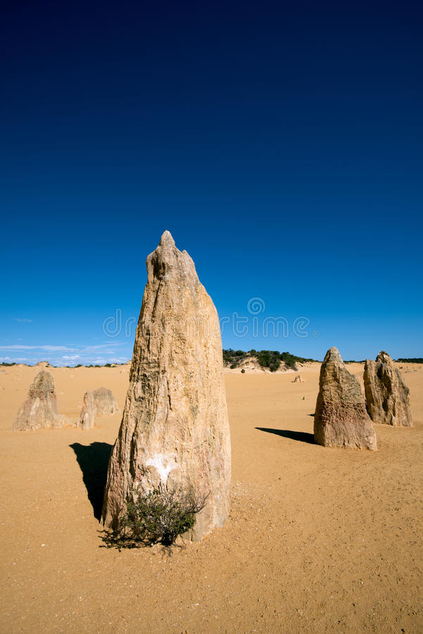 Pinnacles Desert royalty free stock photography