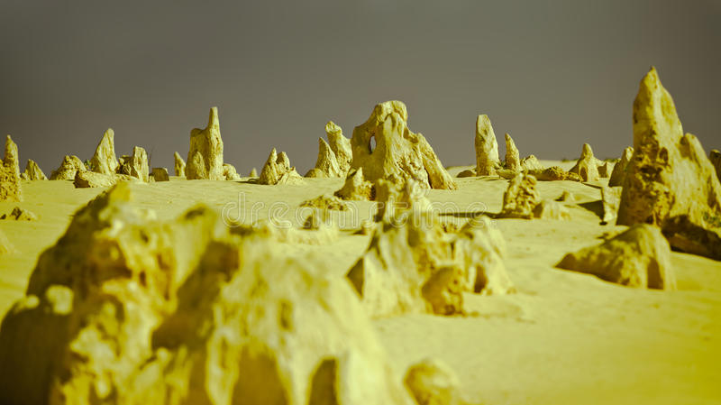 The Pinnacles. Are limestone formations contained within Nambung National Park, near the town of Cervantes, Western Australia.  remained unknown to most stock images
