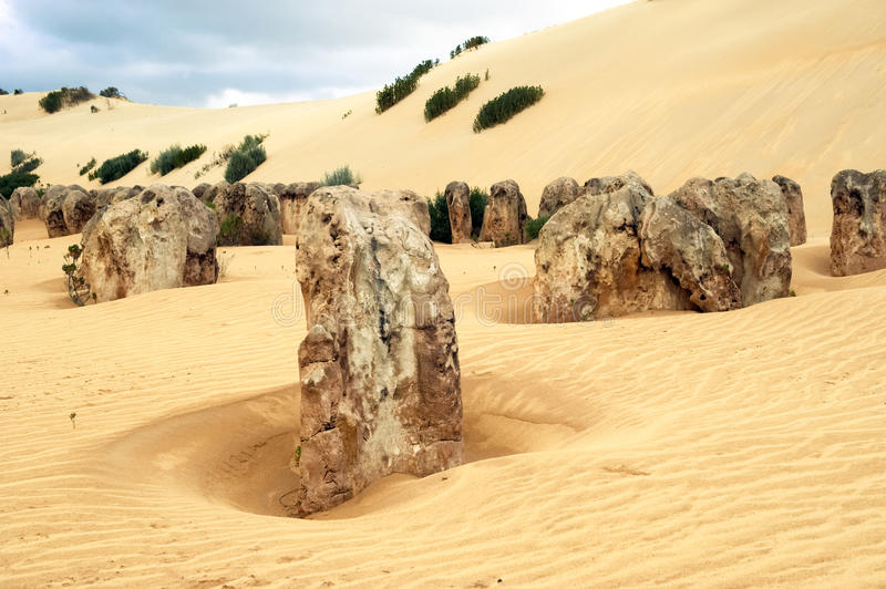 Pinnacles, West Australia stock photography